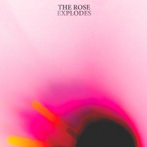Image for 'The Rose Explodes'