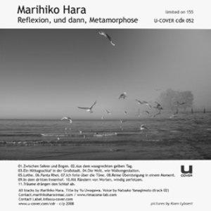 Image for 'Reflexion, und dann, metamorphose'