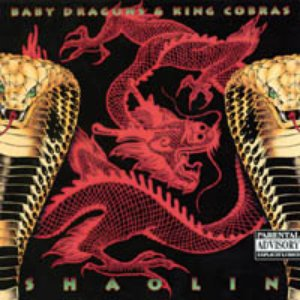Image for 'Baby Dragons & King Cobras'