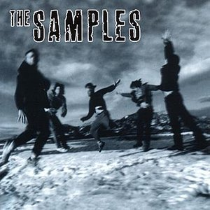 Image for 'The Samples'