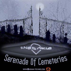 Image pour 'serenade of cemeteries (dessben remix)'