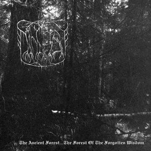 Image for 'The Twilight Mist Cover The Forest... By Embraces Of Darkness...'