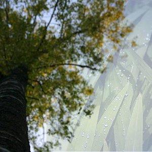 Image for 'fine sounding seasons'