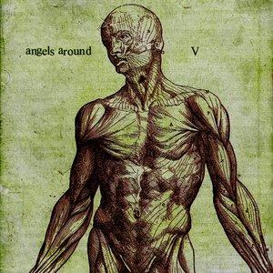 Imagem de 'V'
