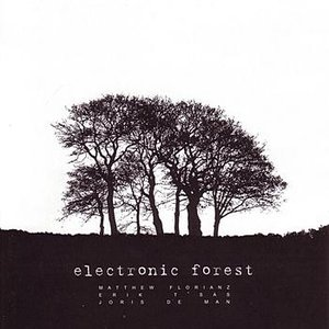 Immagine per 'Electronic Forest'