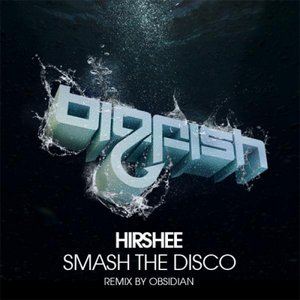 Immagine per 'Smash The Disco (Original Mix)'