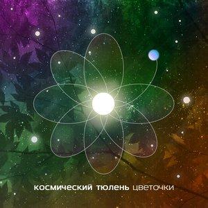 Image pour 'Космический тюлень'
