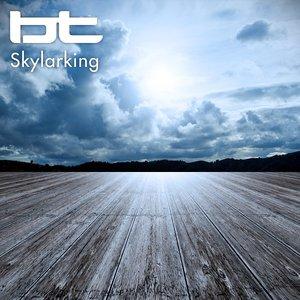 Imagen de 'Skylarking (Original Mix)'