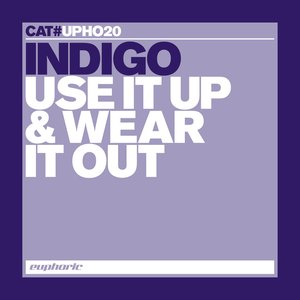 Image for 'Use It Up & Wear It Out'