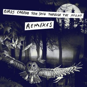 """Birds Carried Your Song Through The Night REMIXES""的封面"