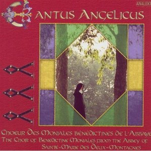 Image for 'The Dance of the Angels and Saints: Hymn: Urbs Ierusalem IV'