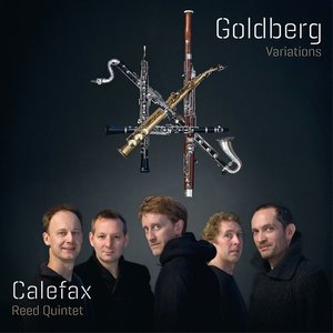 Image for 'Goldberg Variations Bwv 988, Variatio 6, Canone Alla Seconda'