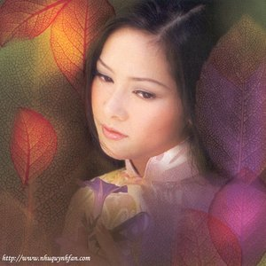 Image for 'Nhu Quynh'