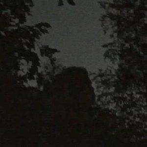 Bild für 'Zonnewende'