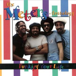 Bild för 'The Meters Anthology - Funkify Your Life (disc 2)'