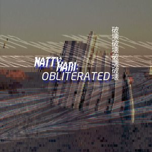 Image for 'OBLITERATED'