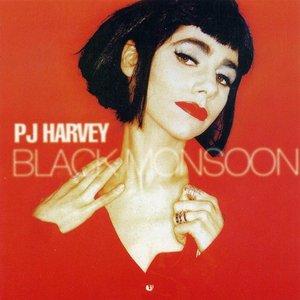 Bild für 'Black Monsoon'