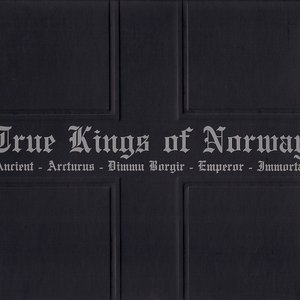 Image for 'True Kings of Norway'