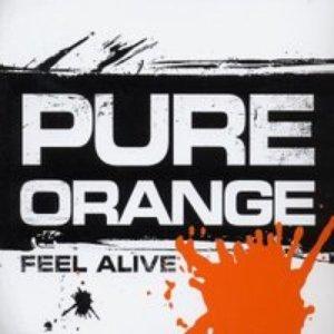Image for 'Pure Orange'