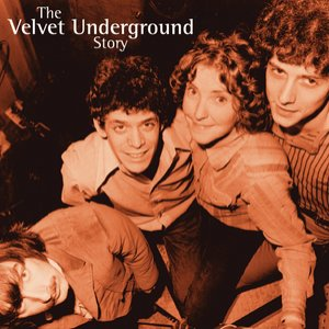 Image for 'The Velvet Underground Story 2CD Set'