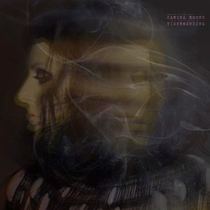 Image for 'Tigermending (Bonus Track Version)'