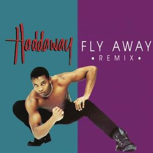 Image for 'Fly Away (Remix)'