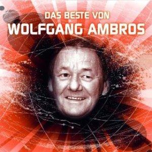 Image for 'Das Beste von Wolfgang Ambros'