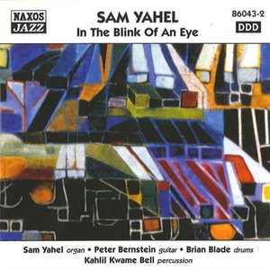 Image for 'Yahel, Sam: In the Blink of an Eye'