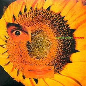 Imagem de 'O Cu Do Mundo'