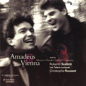 Image for 'Amadeus & Vienna'