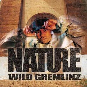 Image for 'Wild Gremlinz'