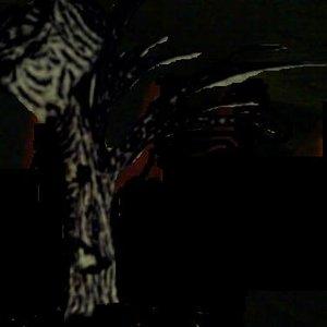 Image for 'Spiegelsplitter'