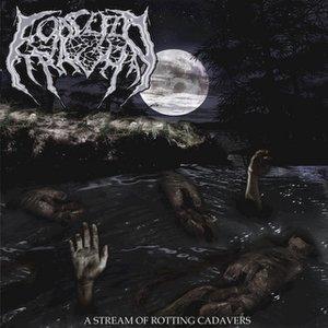 Image for 'A Stream Of Rotting Cadavers'