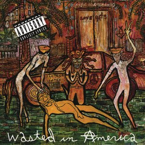Image for 'Wasted In American'