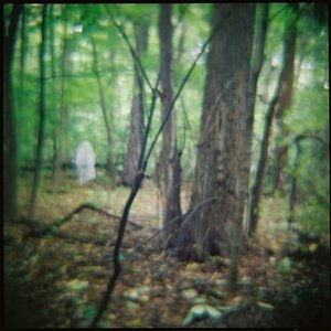 Image for 'Seminary Woods'