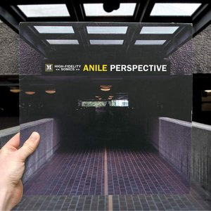 Image for 'Perspective'