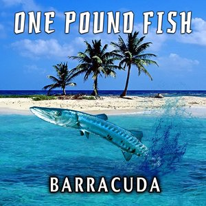 Image for 'One Pound Fish'