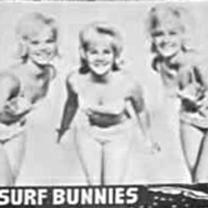 Image for 'Surf Bunnies'