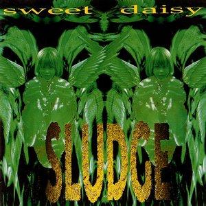 Bild für 'Sweet Daisy'