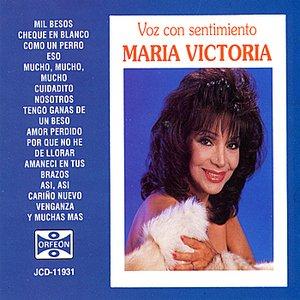 Image for 'Voz con Sentimiento'