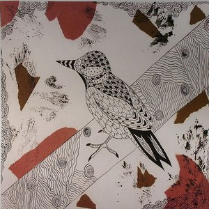 Image for 'Birds In My Home'