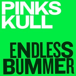 Image pour 'Endless Bummer'