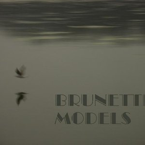 Image for 'Brunette Models'