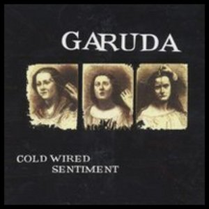 Image for 'Cold Wired Sentiment'