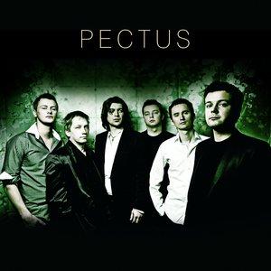 Zdjęcia dla 'Pectus'