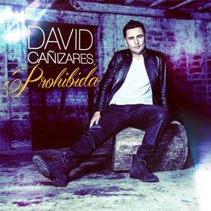 Image for 'Prohibida'