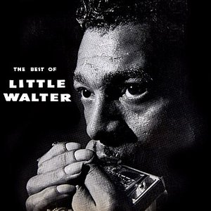 Image for 'The Best of Little Walter'