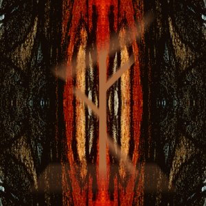 Image pour 'Totemics'