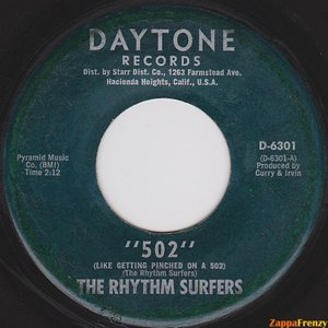Image for 'The Rhythm Surfers'