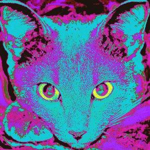 Image for 'Digital Mantra (Single)'